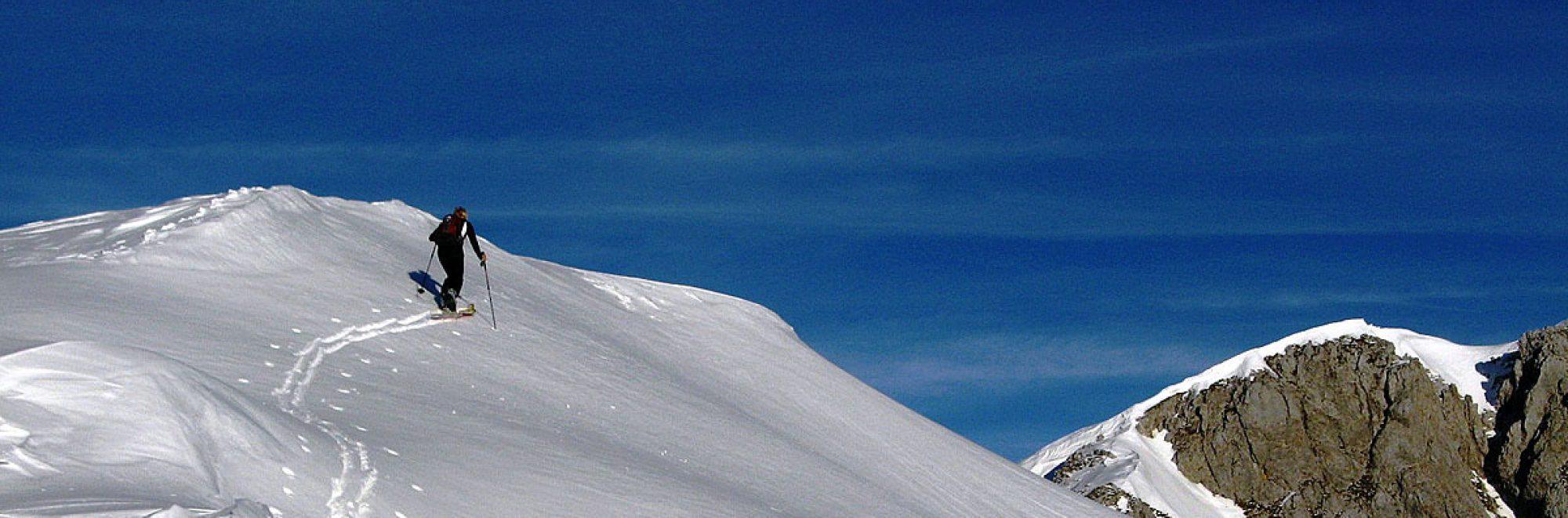 Tiroler Bergsportführerverband